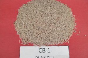 Variétés de riz colorés
